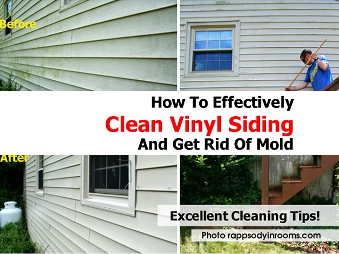 Tips Cleaning Mildew House Home Design Idea