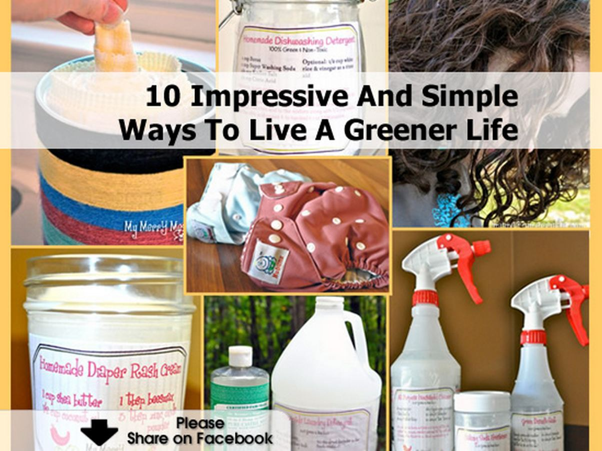 10 Impressive And Simple Ways To Live A Greener Life
