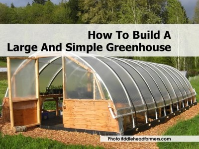 1large-simple-greenhouse