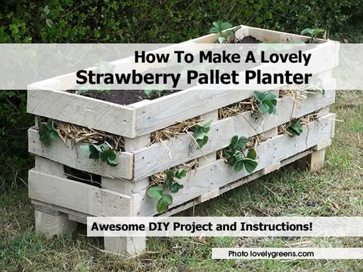 How To Make A Lovely Strawberry Pallet Planter