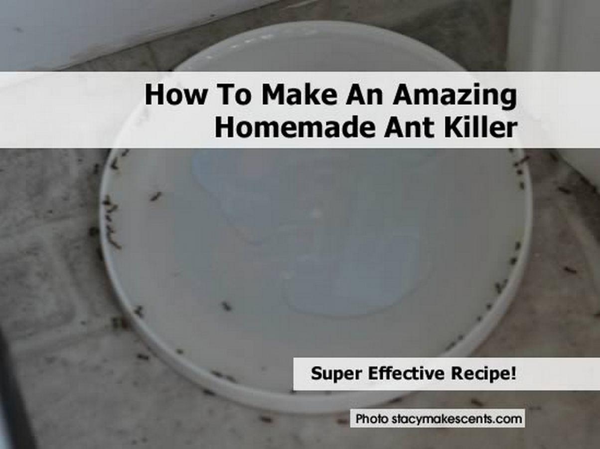 4-ant-bait-killer