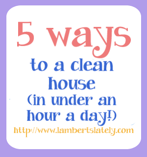5 Ways To Clean House In Under 1 Hour A Day