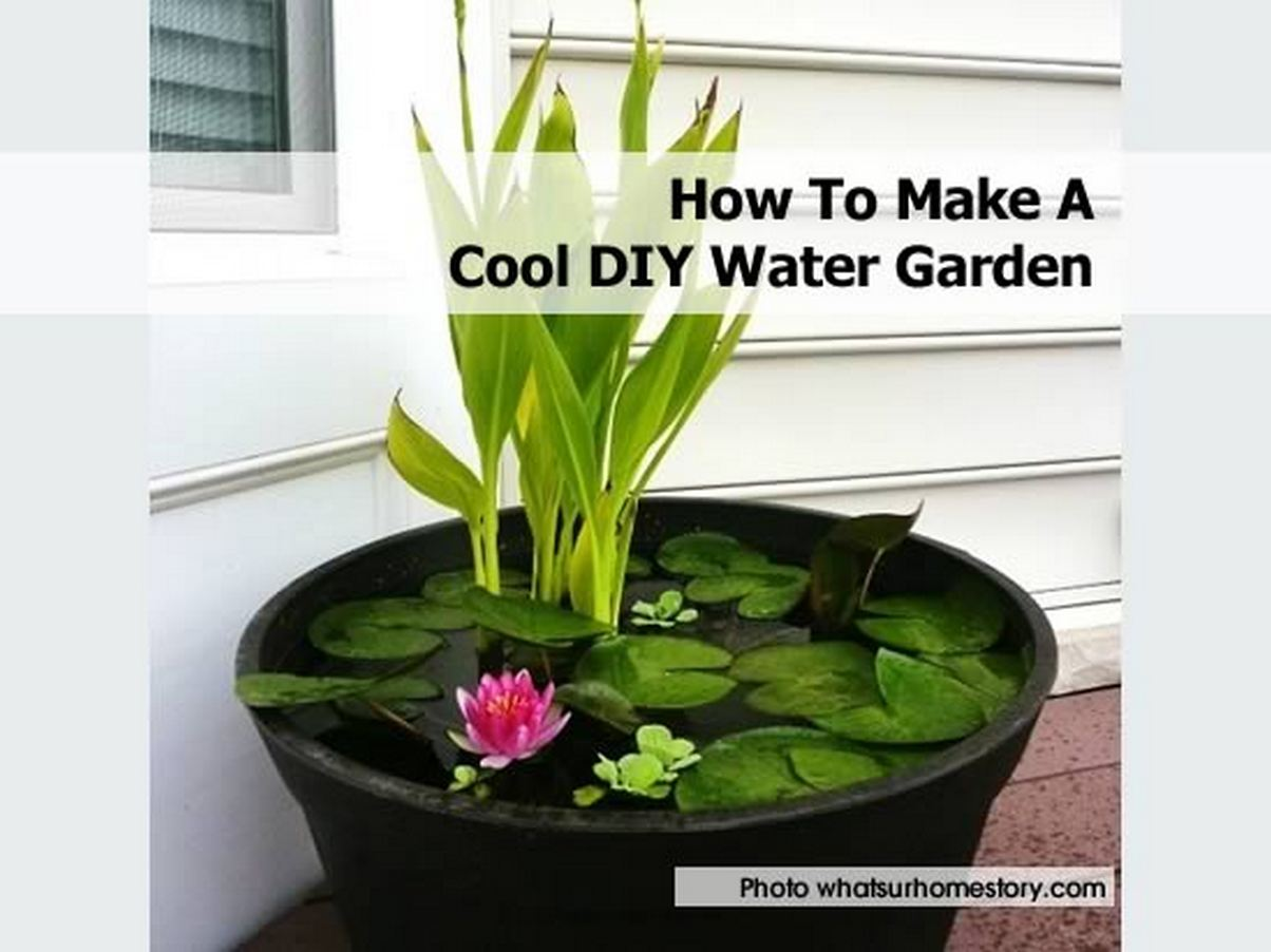 How to make a cool diy water garden for Making a water garden