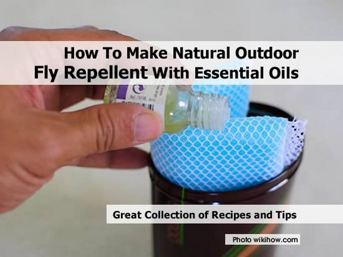 Make-Natural-Outdoor-Fly-Repellent-with-Essential-Oils-Step-by-wikihow-com