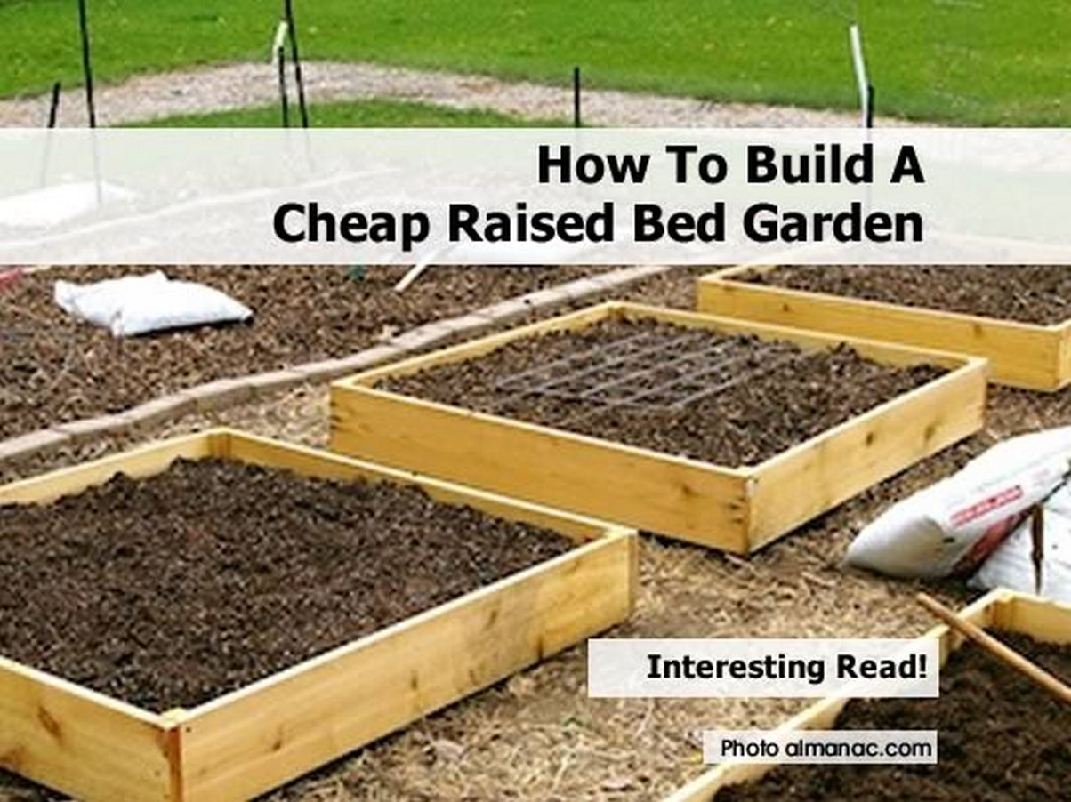 How To Build A Cheap Raised Bed Garden