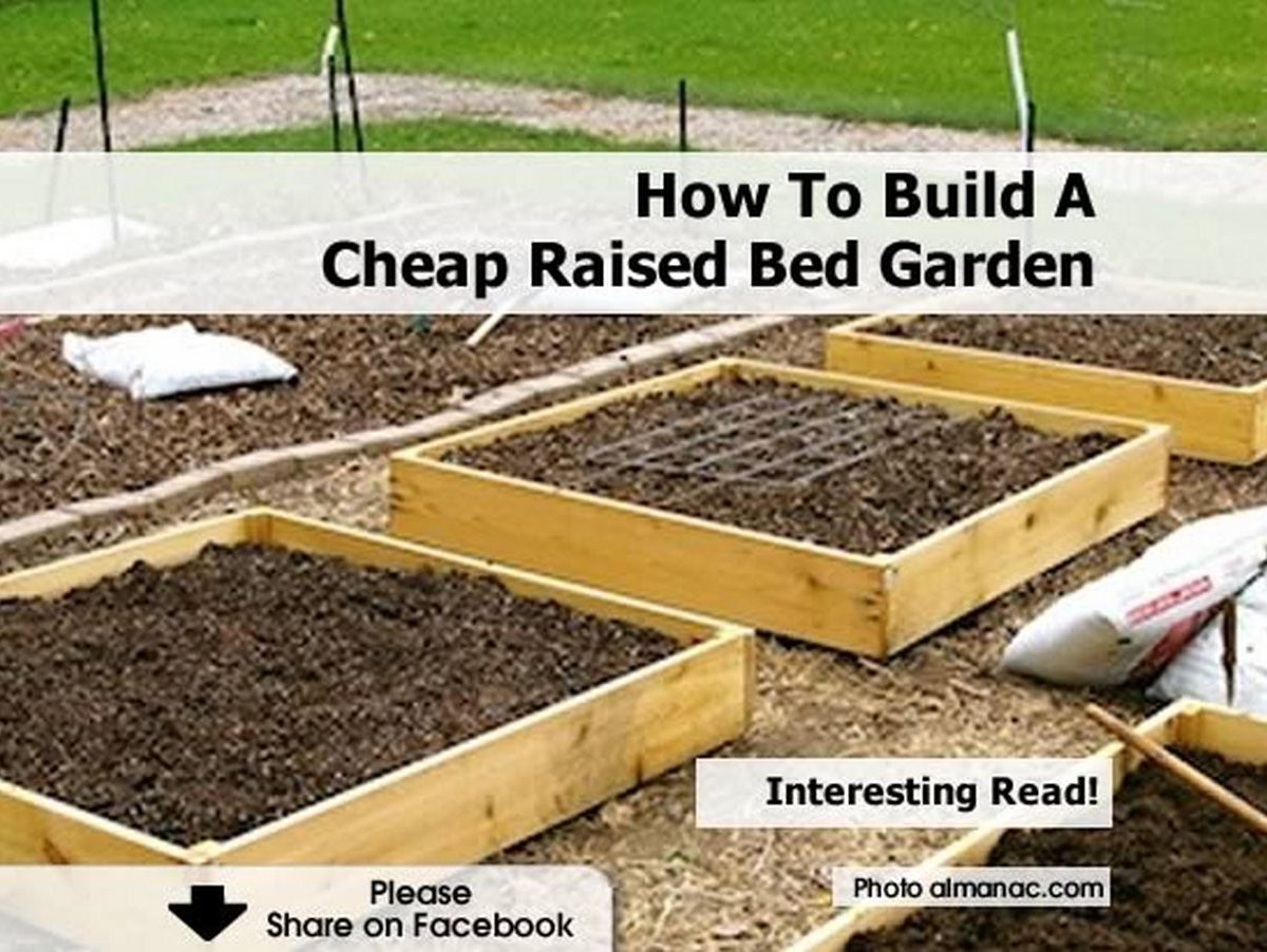 How to build a cheap raised bed garden for Tips for building a house on a budget