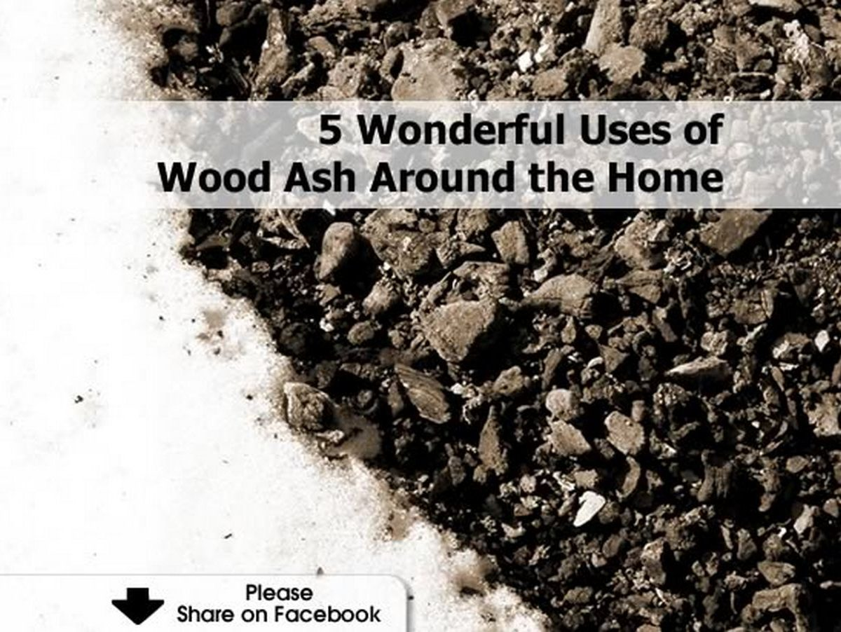 5 Wonderful Uses Of Wood Ash Around The Home