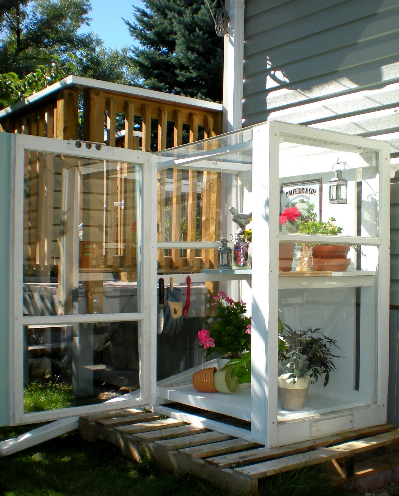 how to build a beautiful mini greenhouse