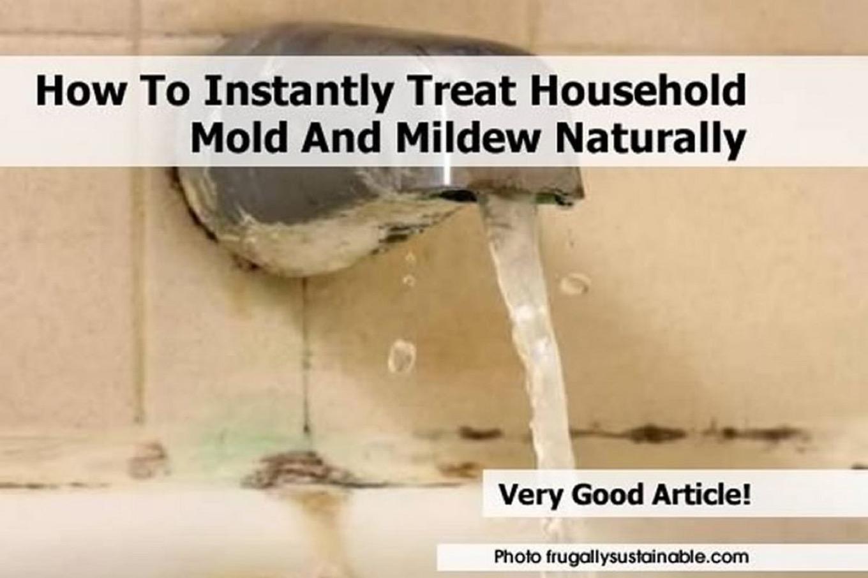 bathroom-mold-2-10