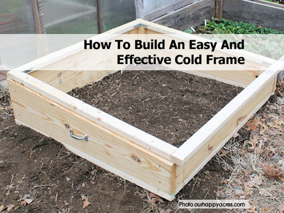 how to build an easy and effective cold frame. Black Bedroom Furniture Sets. Home Design Ideas