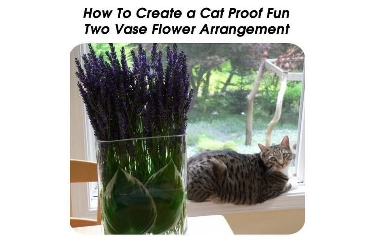 How To Create A Cat Proof Fun Two Vase Flower Arrangement