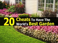 20 Cheats To Have The World's Best Garden