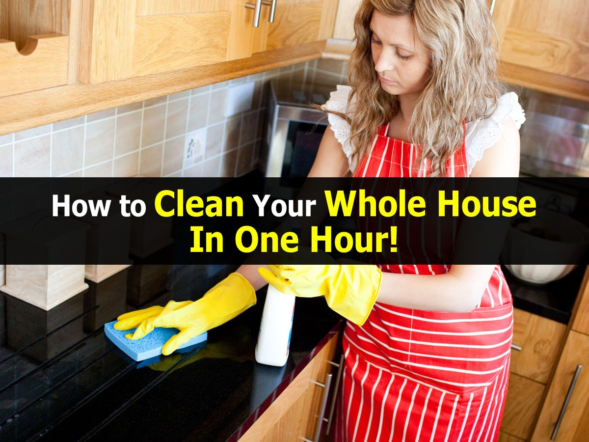 how to hire house cleaning service