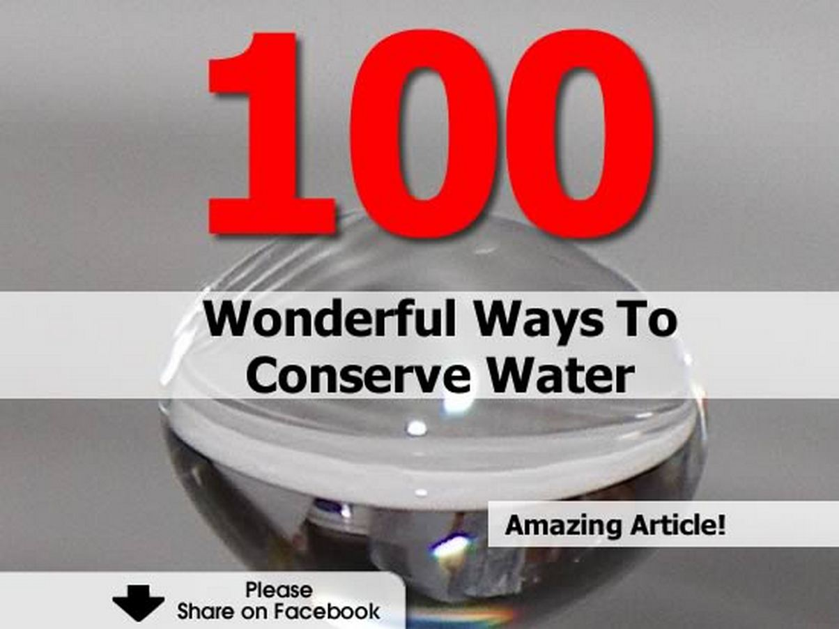 100 Wonderful Ways To Conserve Water