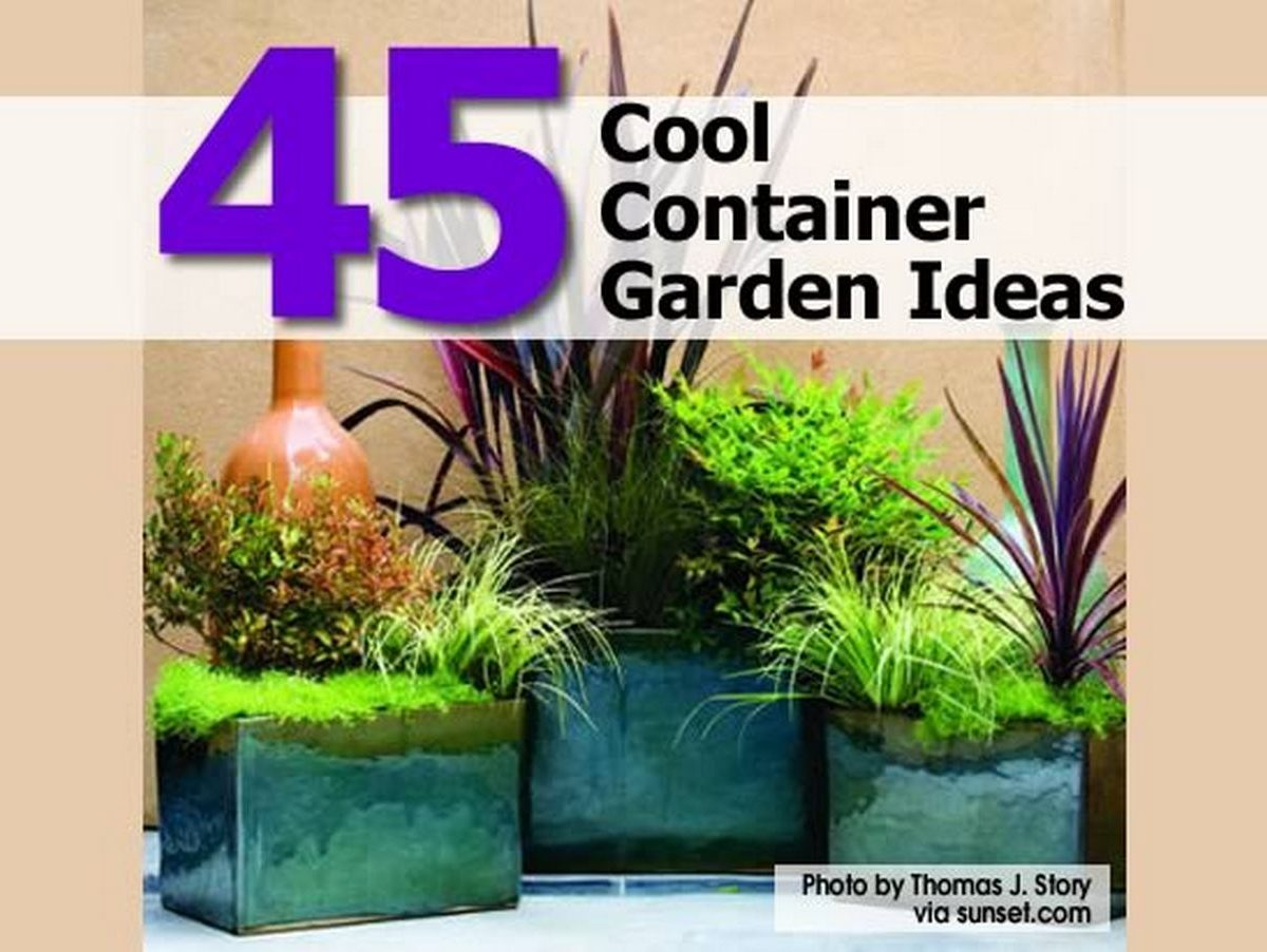 45 cool container garden ideas