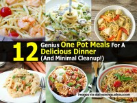 delicios-dinner-dailysavings-allyou-com