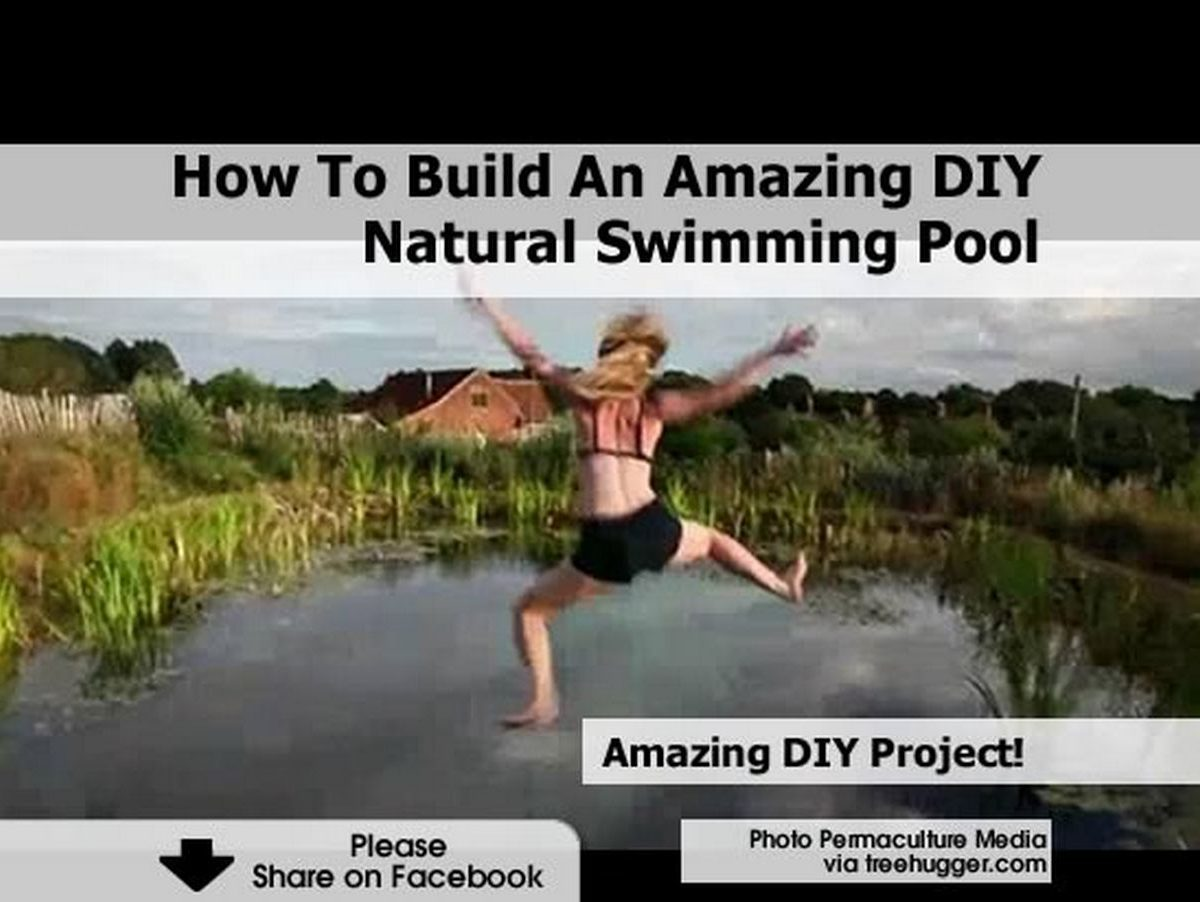 How to build an amazing diy natural swimming pool for How to build a natural swimming pool
