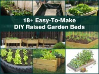 diy-raised-garden-beds