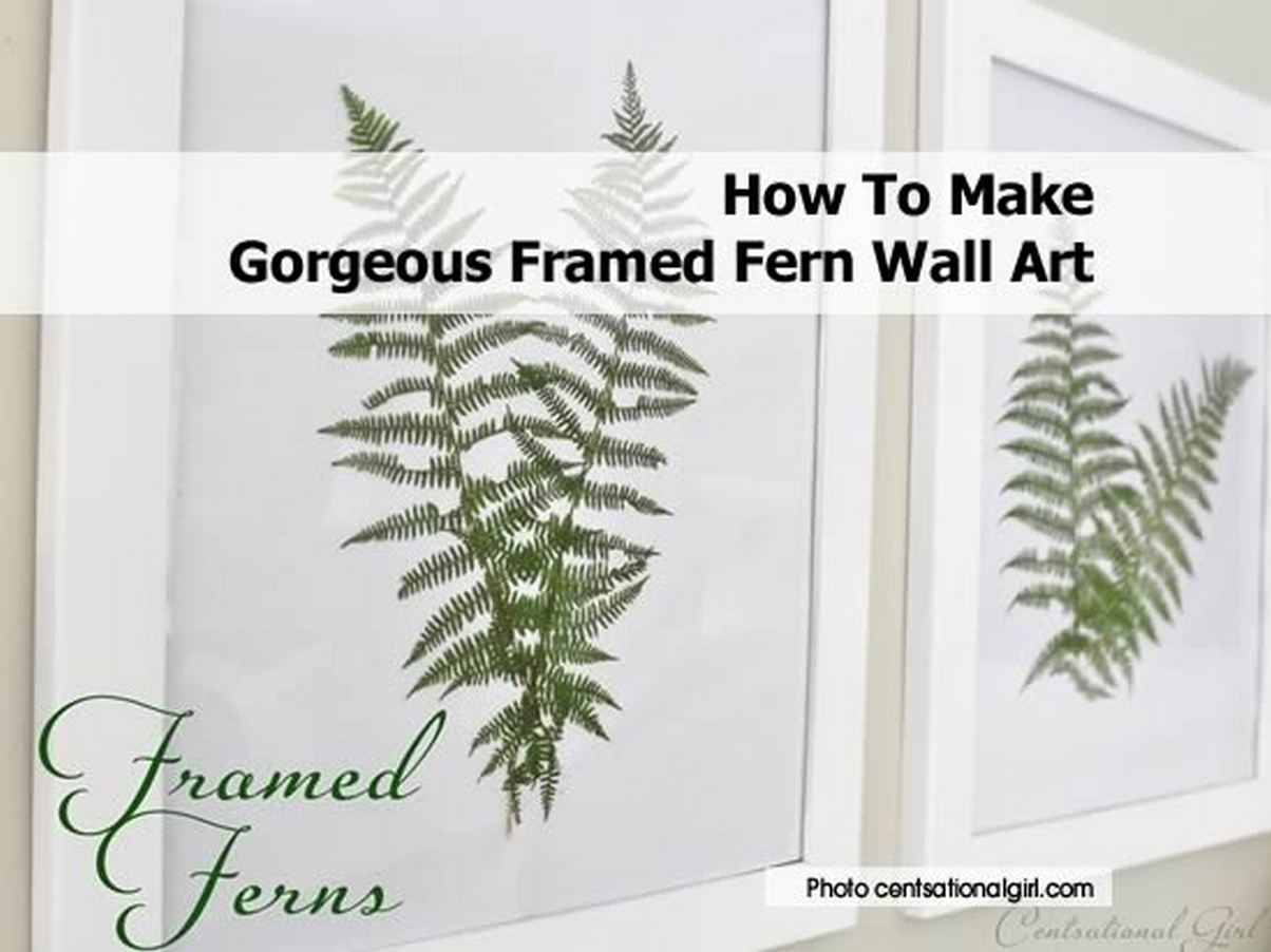 Fern Pictures Art Framed Fern Wall Art