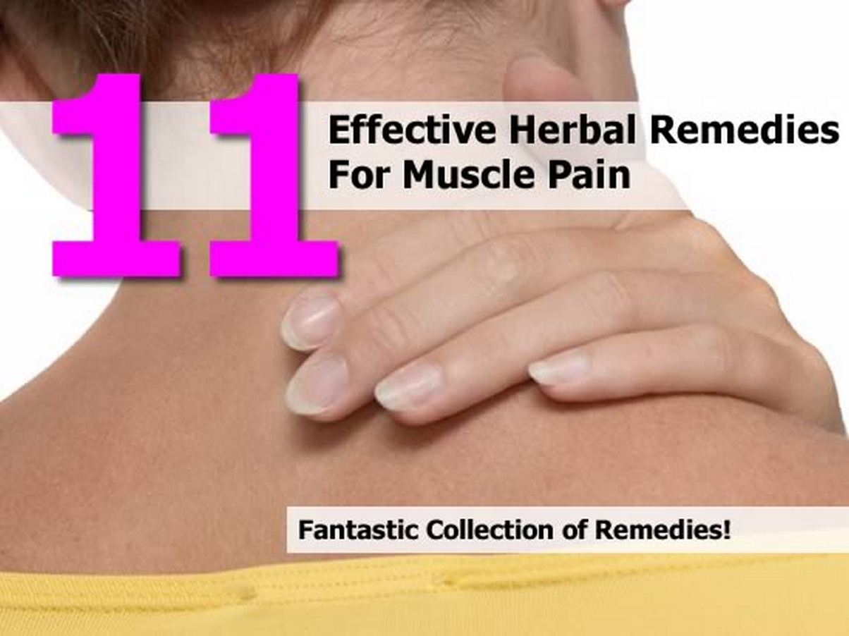 herbal-remedies-muscle-pain
