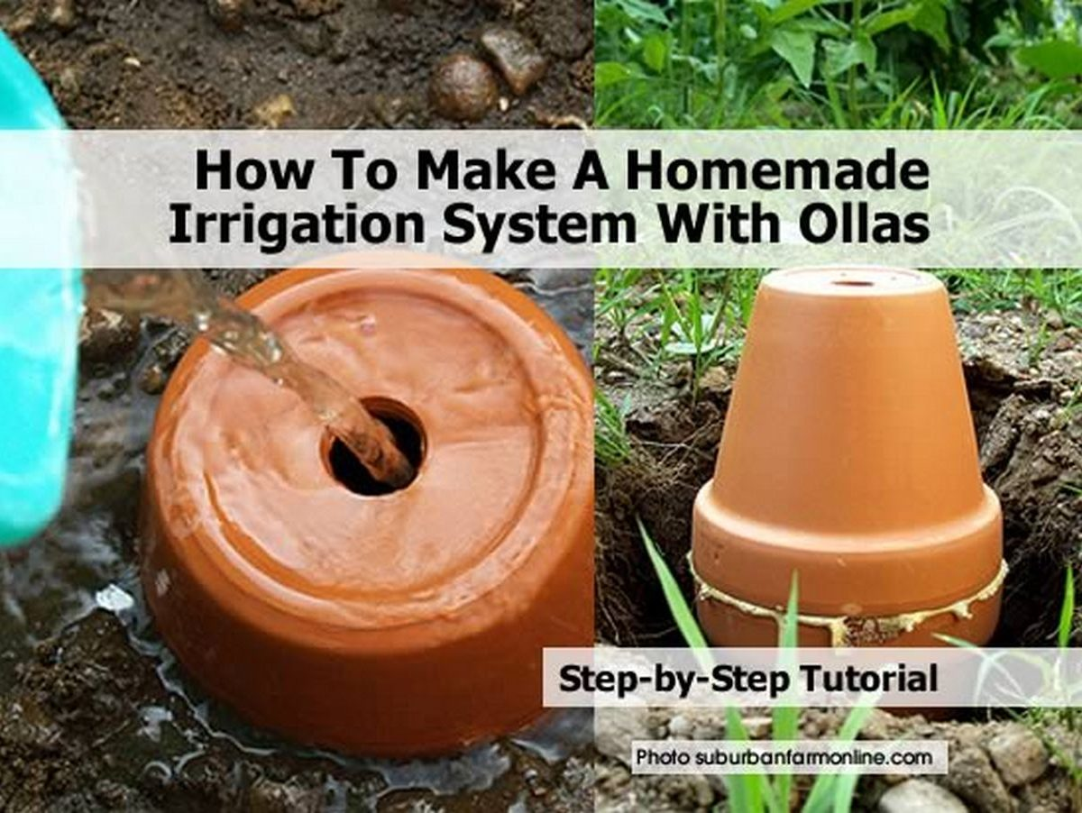 how to make a homemade irrigation system with ollas