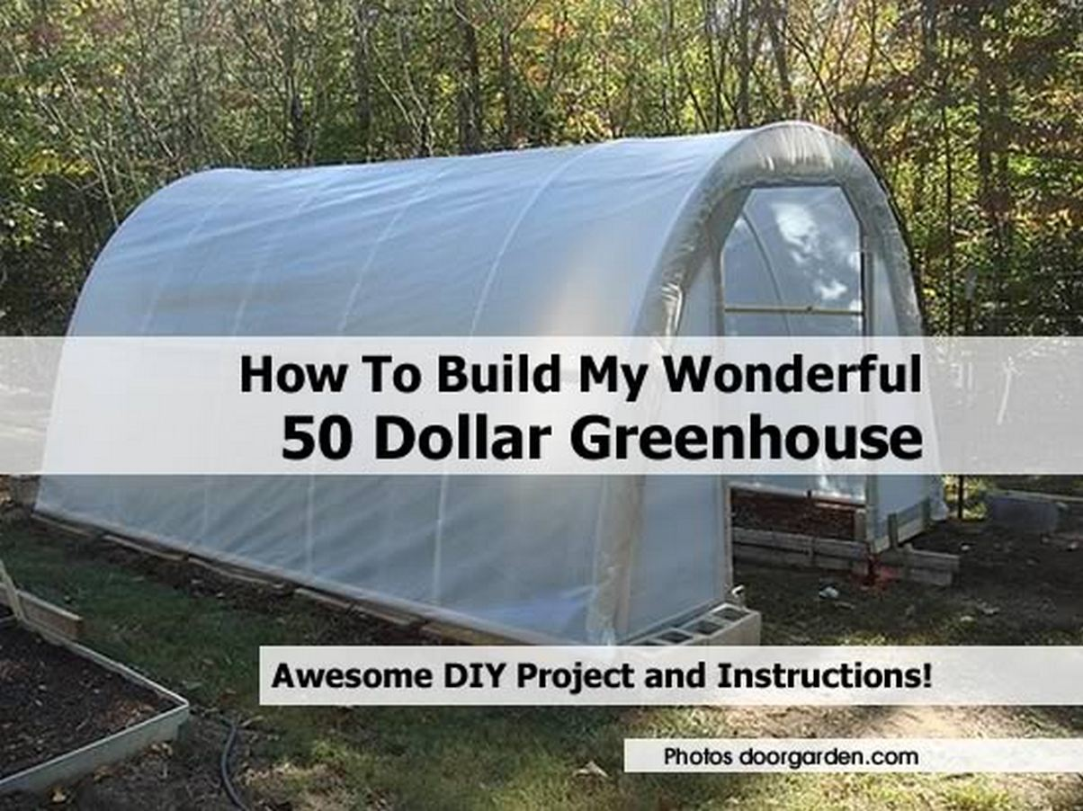 How to build my wonderful 50 dollar greenhouse for How to build a cheap house on your own