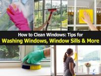 how-to-clean-windows1