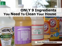 ingredients-need-to-clean-house-lifefromtheland-com