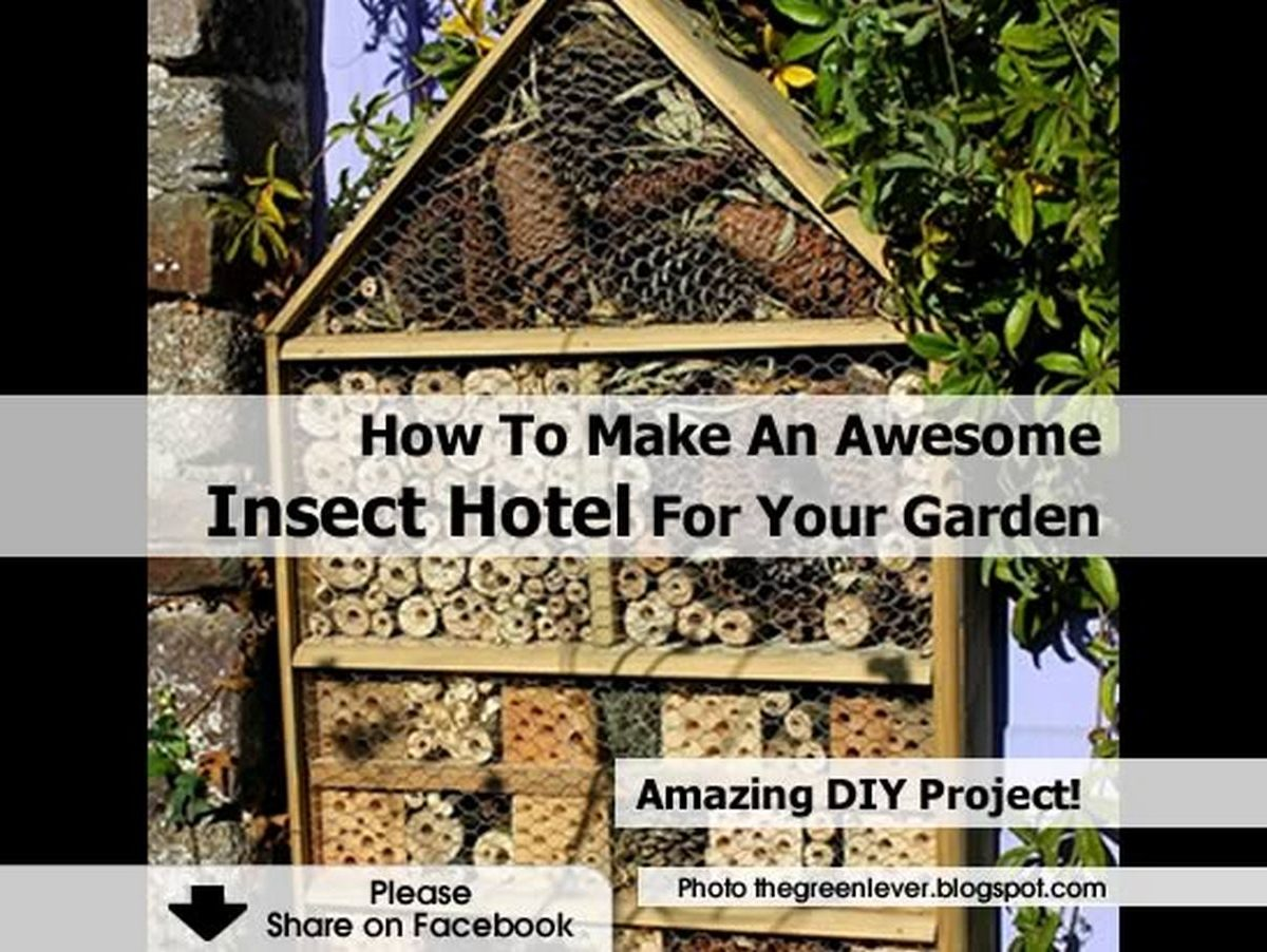 How To Make An Awesome Insect Hotel For Your Garden