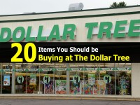 20 Items You Should be Buying at The Dollar Tree