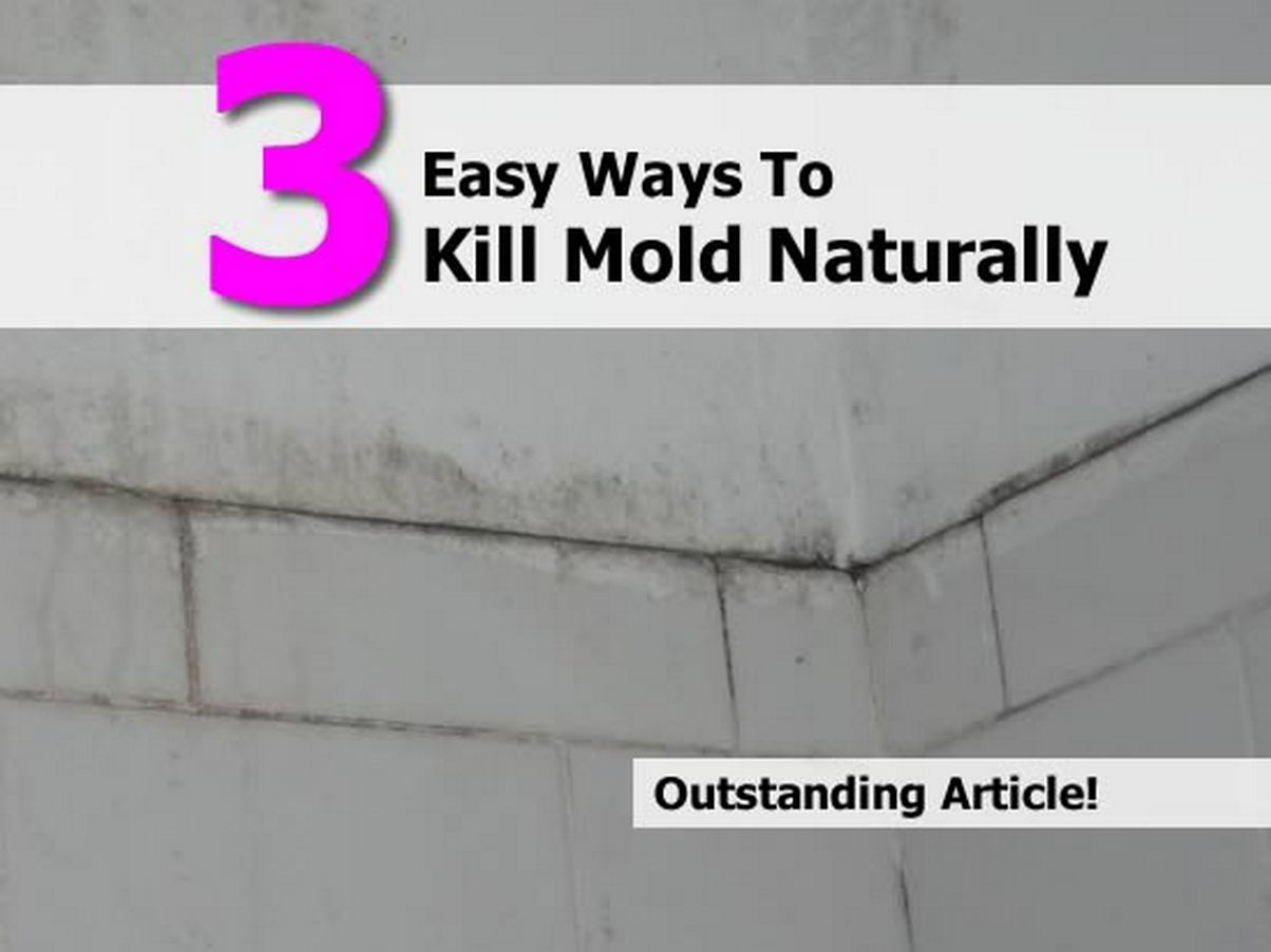 3 easy ways to kill mold naturally. Black Bedroom Furniture Sets. Home Design Ideas
