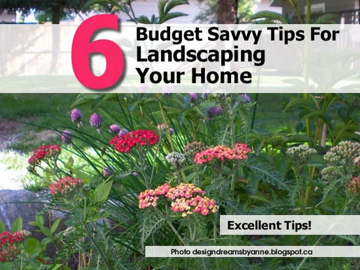 6 budget savvy tips for landscaping your home Savvy home and garden