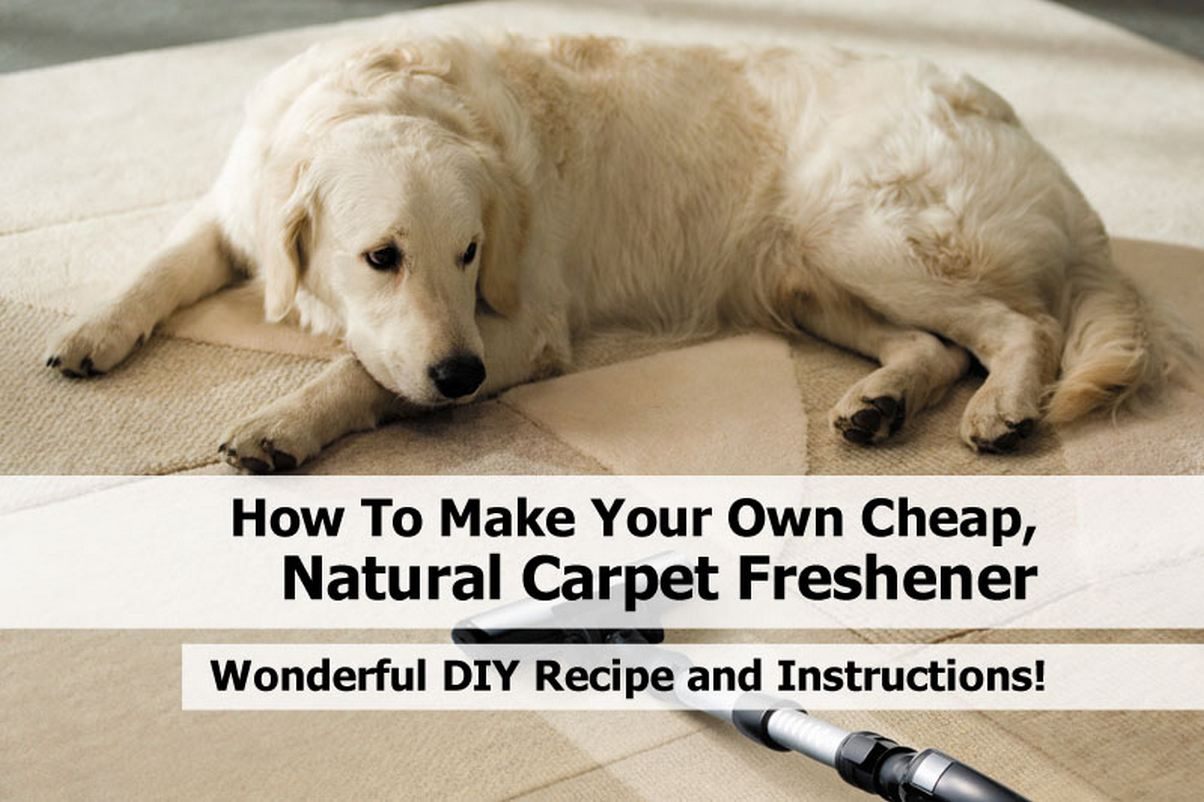 How to make your own cheap natural carpet freshener for How to build a cheap house on your own