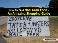 How To Find Non-GMO Food – An Amazing Shopping Guide