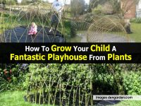 How To Grow Your Child A Fantastic Playhouse From Plants