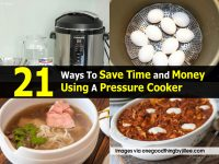 21 Ways To Save Time and Money Using A Pressure Cooker