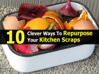 10 Clever Ways To Repurpose Your Kitchen Scraps