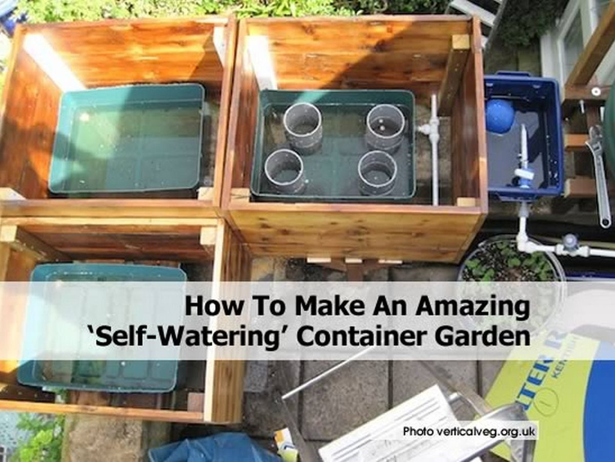 How To Make An Amazing Self Watering Container Garden
