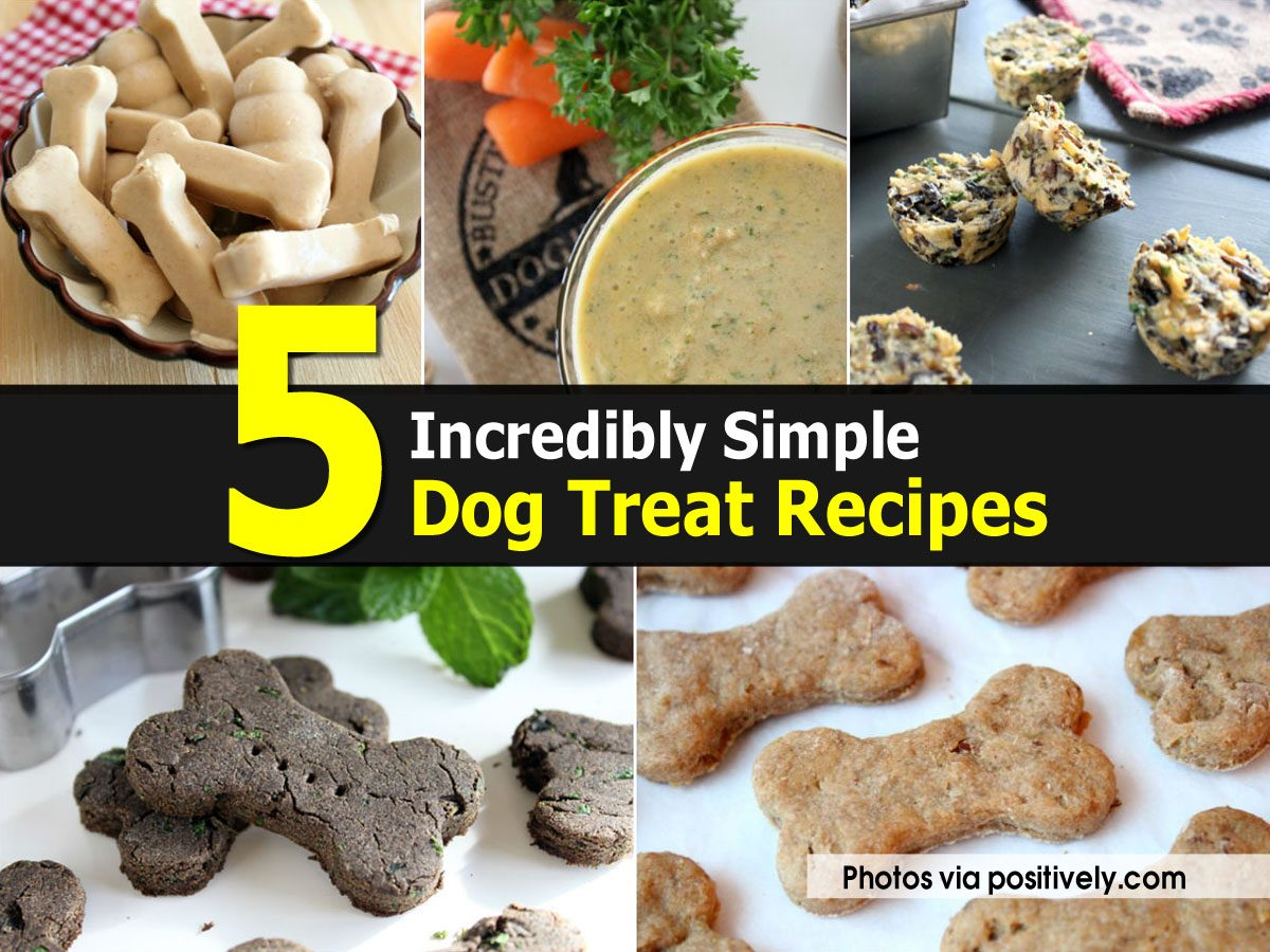 5 Incredibly Simple Dog Treat Recipes
