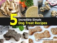 simple-dog-treat-recipes