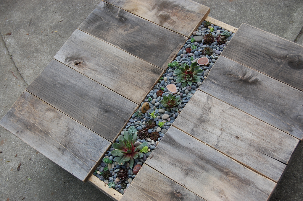 How To Build A Rustic Succulent Coffee Table
