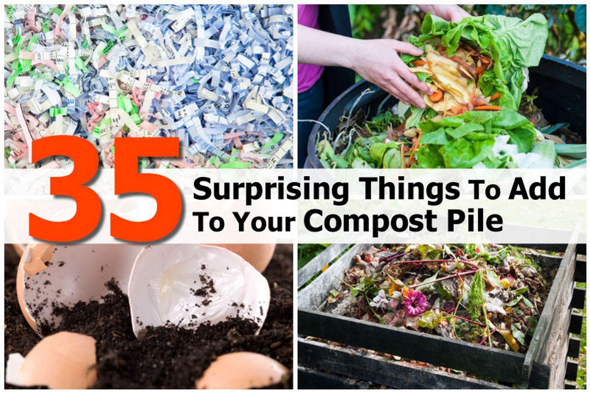 things-add-to-compost-pile