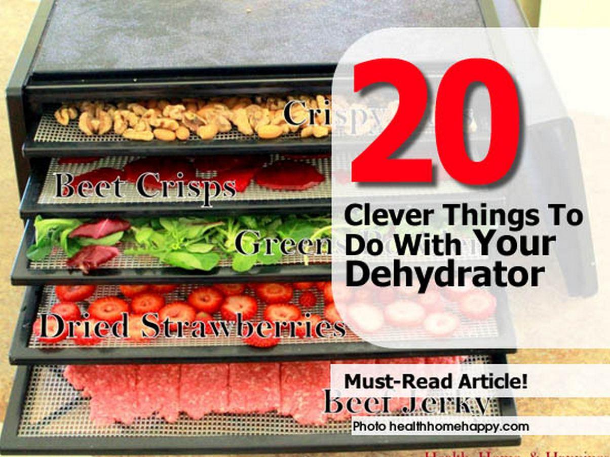 use-dehydrator-healthhomehappy-com