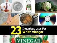 uses-for-white-vinegar