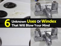 6 Unknown Uses Of Windex That Will Blow Your Mind