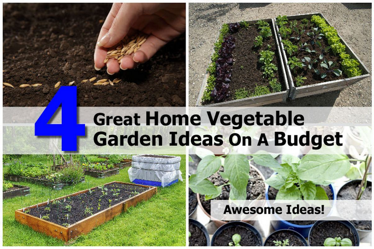 4 great home vegetable garden ideas on a budget for Small gardens on a budget