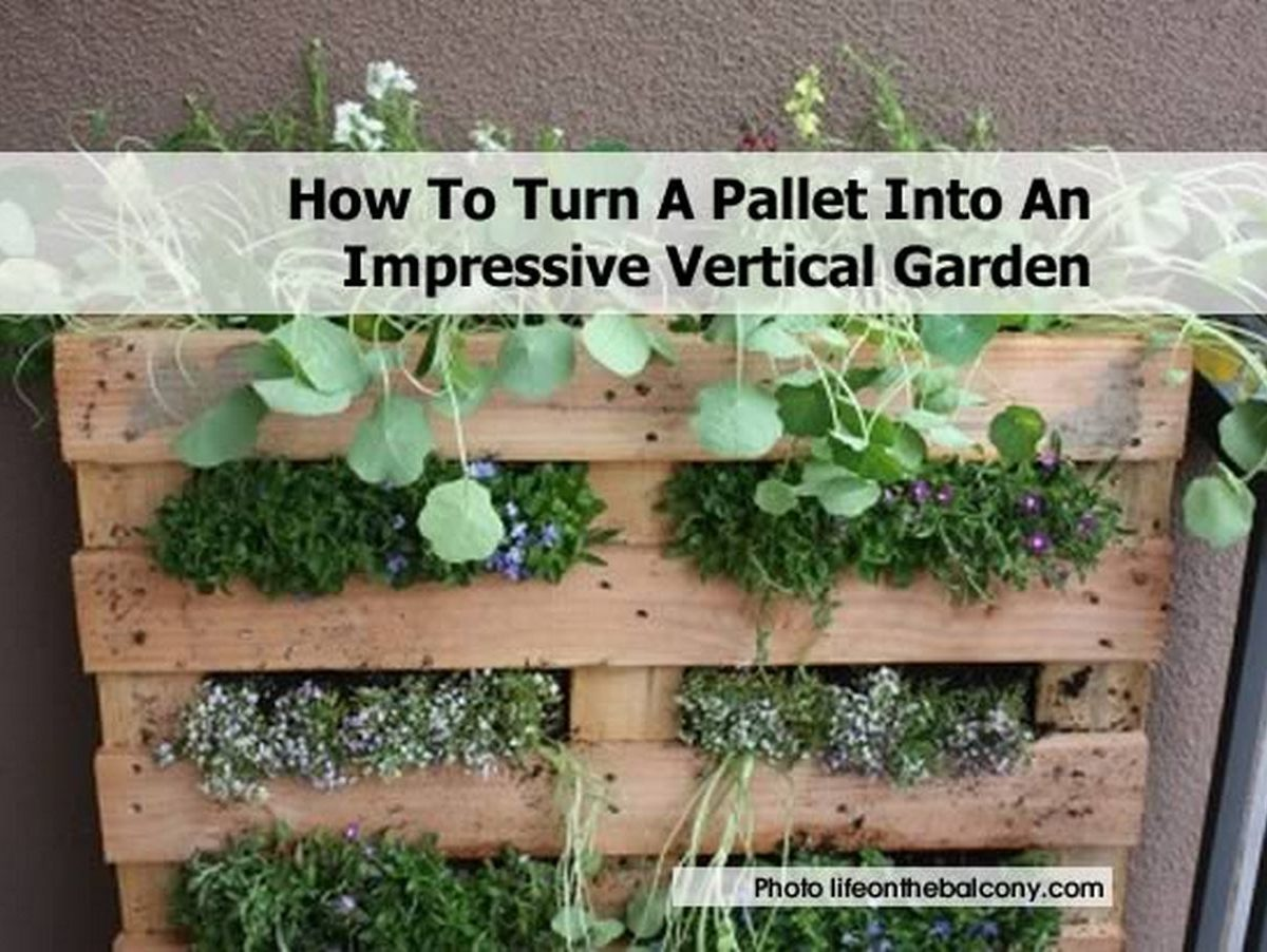 How to turn a pallet into an impressive vertical garden for How to landscape a garden