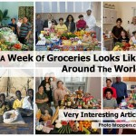 week-of-groceries-fstoppers-com