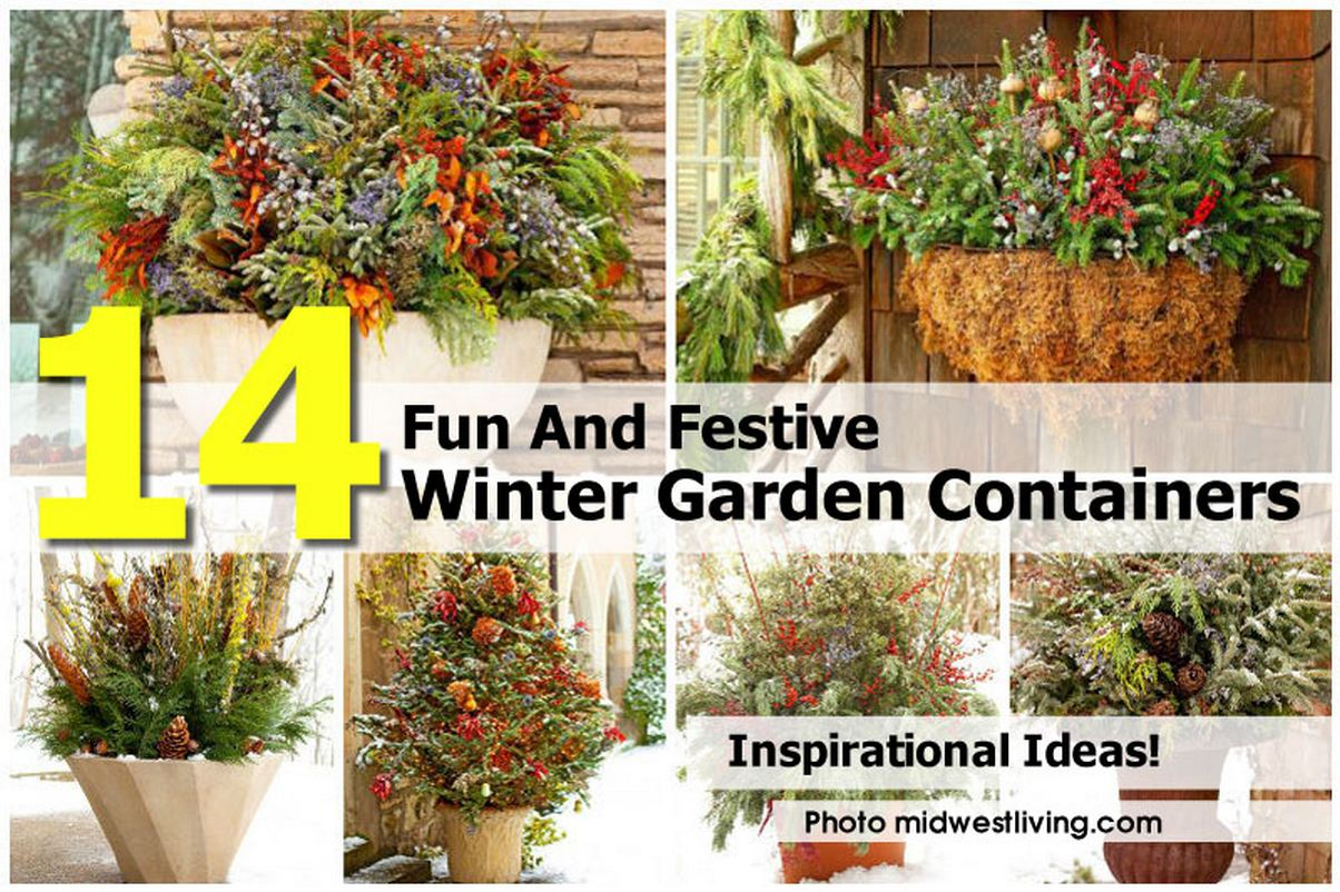 winter-garden-containers-midwestliving-com