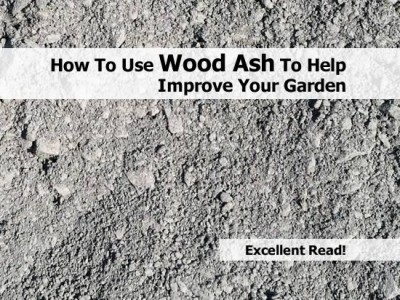 This week home woodworking tips my new blog for Is wood ash good for the garden